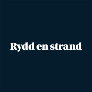 Ikon Rydd en strand